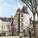 Chateau de Louise de Savoie Romorantin
