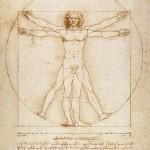 L'homme de Vitruve par Leonard de Vinci